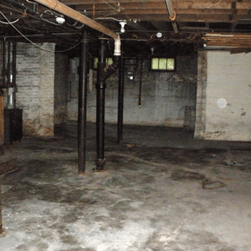 Musty Basement Smell Removal - Mildew Removal - Mechanicsville, Maryland