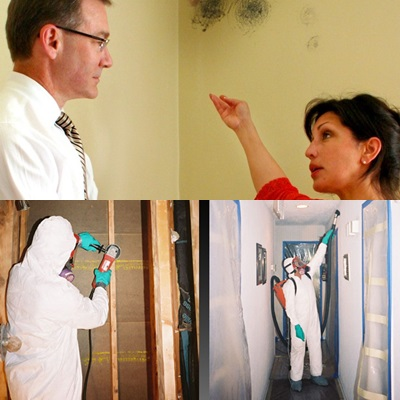 Home Mold Testing - Mold Testing - Salisbury, North Carolina